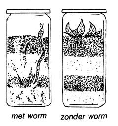 aandeslag_wormen-potten