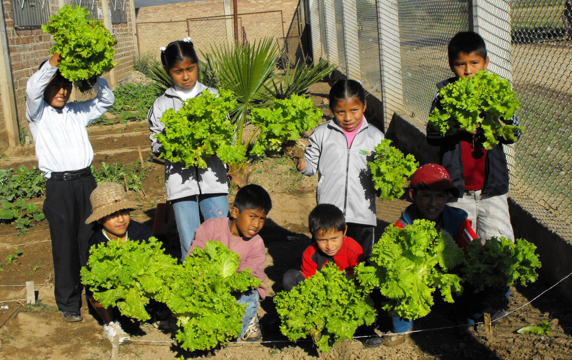 NME MUNDIAL: Iedereen elke dag verse groente, ook in Bolivia